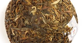 Production of sheng pu'er (dark tea)